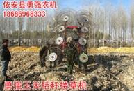 供应 高质量小型搂草机 玉米秸杆搂草机 农用牧草收割机